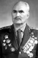лихотворик владимир степанович